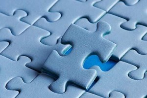 The Puzzle dan skognes leadership development trainer coach consultant motivation blogger speaker