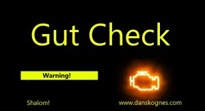 Gut Check dan skognes motivation blogger speaker teacher trainer coach